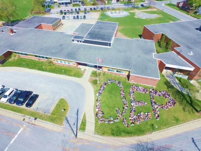Whole school